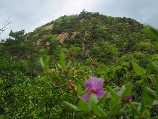 s-�H岩肌の荒地山.jpg