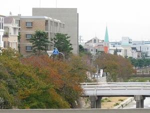 s-芦屋川沿いの桜の紅葉.jpg